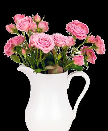 white-vase-roses